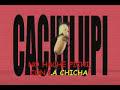 Pulentos de Cachipún