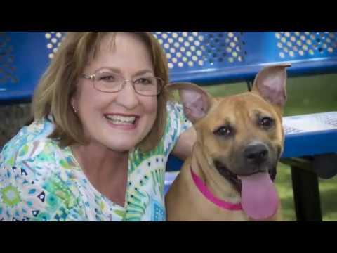 OCFL Update - Orange County Animal Services Lake Walk