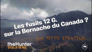theHunter: Call of the Wild - Stratégie de chasse pour la Bernache du Canada | Ps4 Fr