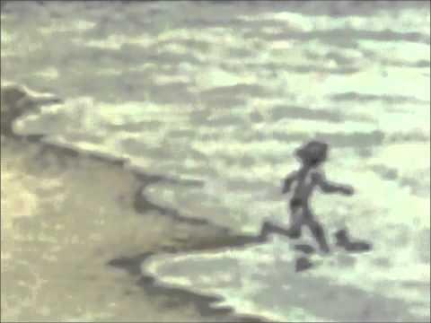 Дельфин - Мишины Дельфины