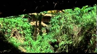 Portés Disparus 2: Pourquoi ? - [Film] - 1985