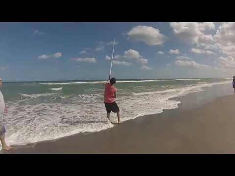 Melbourne Beach FL, Shark fishing 2014