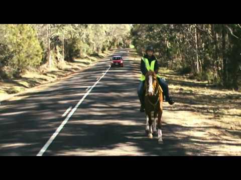 Car Safety around Horse Riders