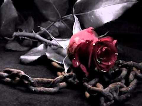 Gloria Estefan - No Pretendo