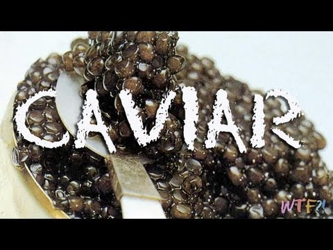 What is and how to eat caviar caviar 101 youtube for How to prepare caviar