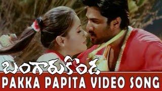 Pakka Papita Video Song || Bangaru Konda Movie || Rishi, Navneet Kaur