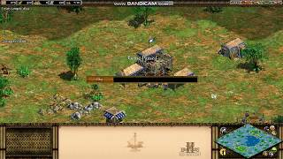 Some Age of Empires II cheats