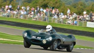 Jaguar D-Type!!! Goodwood Revival 2014 Race Highlights | Lavant Cup