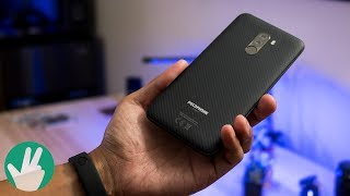 Who is the Pocophone F1 for?