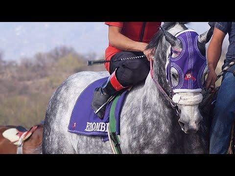 Carreras de caballos Moctezuma 21 de  Abril  2018