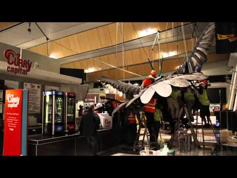 Gandalf swoops into Wellington Airport's terminal