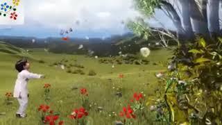 ঈদ মোবরক