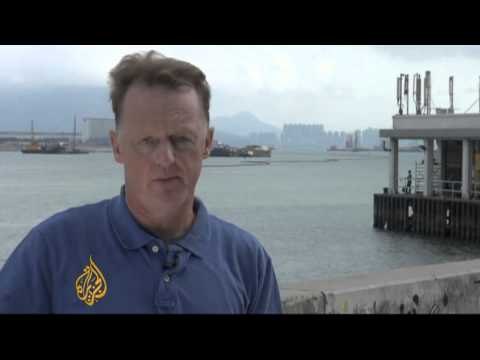 Hong Kong dolphins at risk from pollution