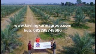 082298748686 | Jual Tanah Kavling Murah Bogor, Jasinga, Tanjungsari, Banten, Cirebon