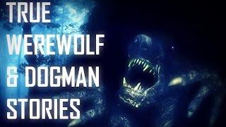 3 TRUE SCARY Werewolf & Dogman Stories