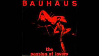 Watch Bauhaus The Passion Of Lovers video