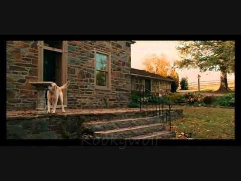 Marley And Me - Here I Am video