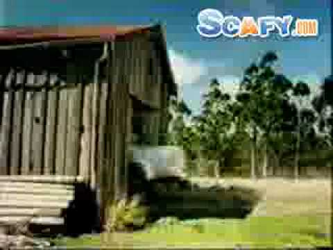 Sheep Funny Funny Commercials Sheep