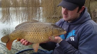 Longer Distance Method Feeder Fishing - Rigs, Tips & Tactics