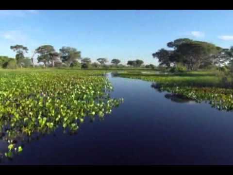 Homenagem ao Dia da Agua Anauger.wmv