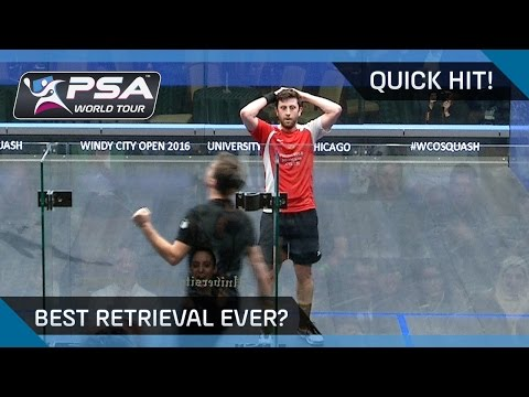 QuickHit: OUTRAGEOUS DIVE & WINNER - BEST RETRIEVAL EVER?