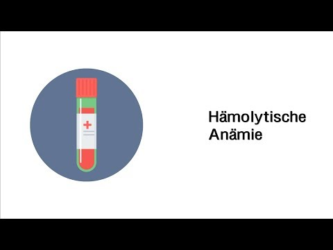 Hämolytische Anämie - Erkrankungen des Blutes