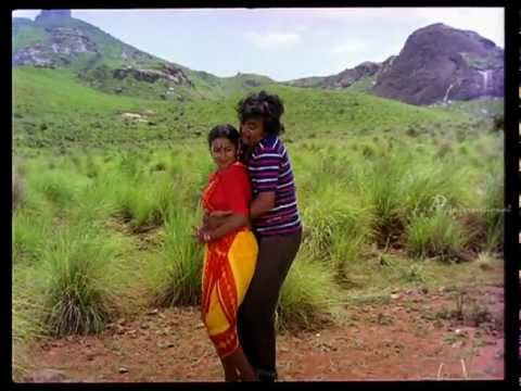 Pokkiri Raja- Naan Pokkirikku Song video