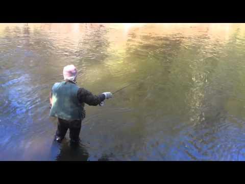 2015 Brule River Fishing Opener