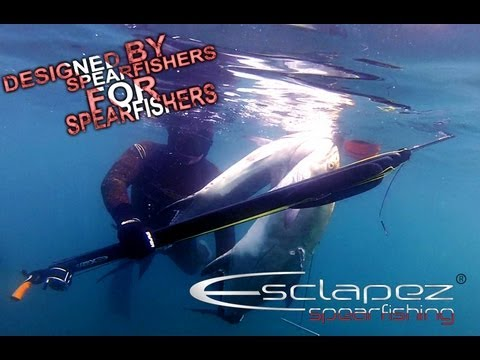 Doublé de liche amie à Antibes mai 2013 Spearfishing