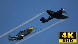 P-51 Mustang vs. Sea Fury - A Comparison
