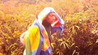 Download Lagu Expedisi burni telong Gratis STAFABAND