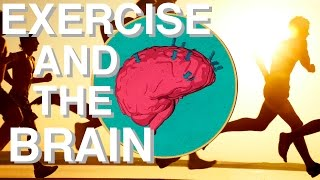 WHY Exercise is so Underrated (Brain Power & Movement Link)
