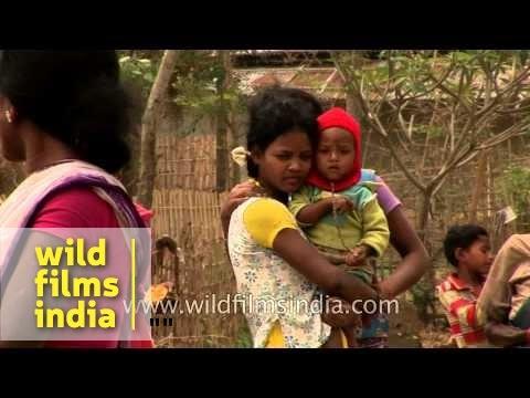 Village life of Assam