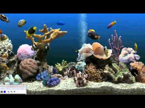 How to get an Aquarium as your Desktop Background (Xp. Vista. Windows 7)
