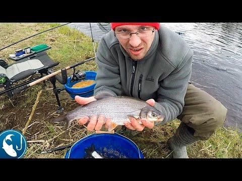 ловить рыбу на фидер в марте