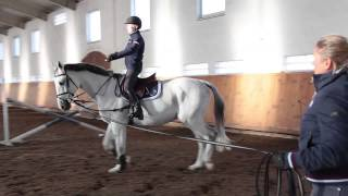 Jazda konna - Ćwiczenia na lonży