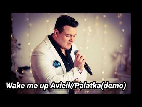 Wake me up Avicii //Palatka