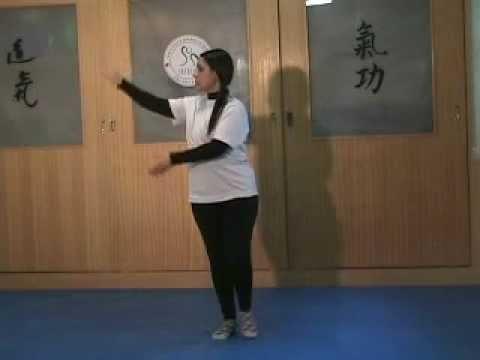 Tai Chi Chuan Yang Sequência De 8 Movimentos video