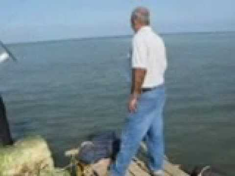 Caspian sea for Where to buy fish mox locally