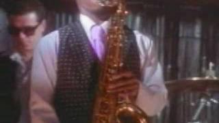 Ronny Jordan - THE JACKAL
