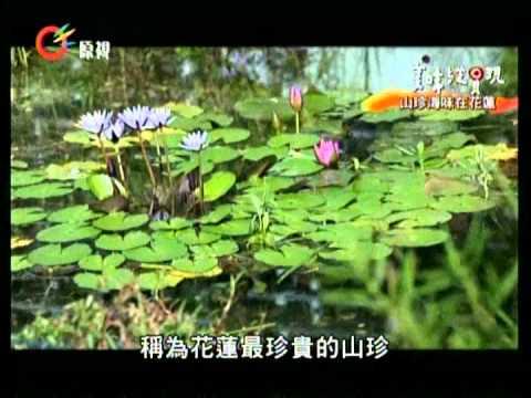 台綜-美味縱貫現-EP 021 山珍海味在花蓮