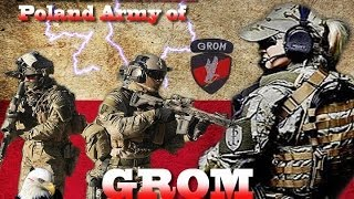 GROM .(Poland of military special )