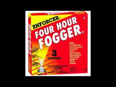 Four Hour Fogger - Pita Bread