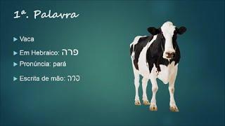 Aprenda 5 Palavras De Hebraico Por Dia #5