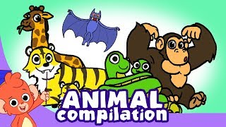 Learn Animals for Kids | Zoo Animal Cartoon Compilation for Children |  Safari Cartoon Cartoons
