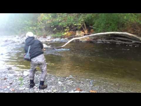 Pennsylvania Steelhead Fishing - Elk Creek