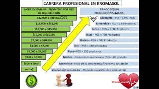 Plan de Negocios en 2016 by Kromasol