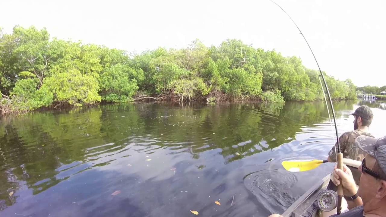Fly Fishing For Tarpon In A Kayak In Fort Myers