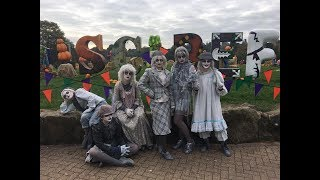 A family friendly halloween at Alton Towers Scarefest, and the Rollercoaster restaurant