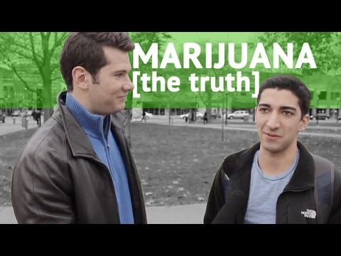 MARIJUANA!! The Truth!